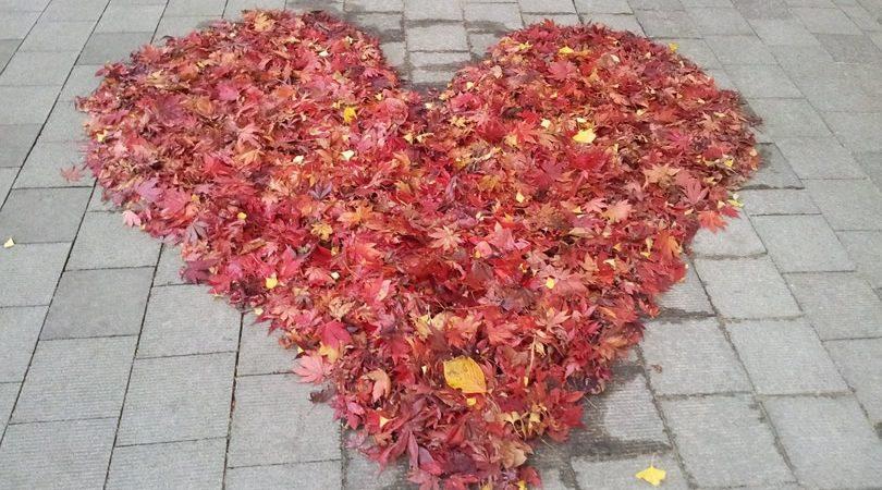 Tirage amour immédiat avec une voyante compétente en ligne